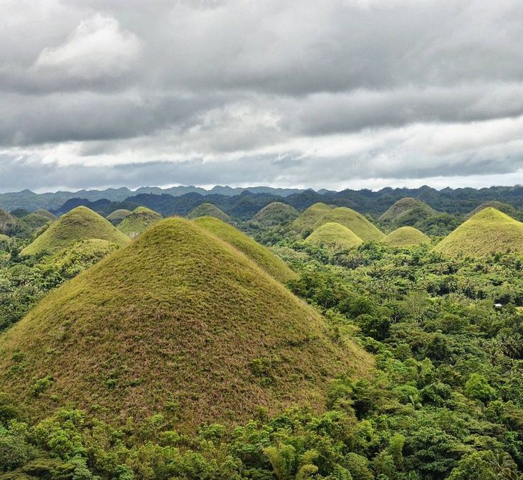 During our stay in Bohol we had to pay a visit to the famous Chocolate Hills and it was well worth it! Durante nossa estadia em Bohol não podíamos deixar de visitar as belas Colinas de Chocolate!  #chocolate #chocolatehills #bohol #daytrip #philippines #philippinesphotocontest #filipinas #itsmorefuninthephilippines #view #scenery #top #nature #hike #hiking #landscape #natureporn #nature_seekers #clouds #instanaturelover #landscape_lovers #landscapes #amazing #summit #wilderness…