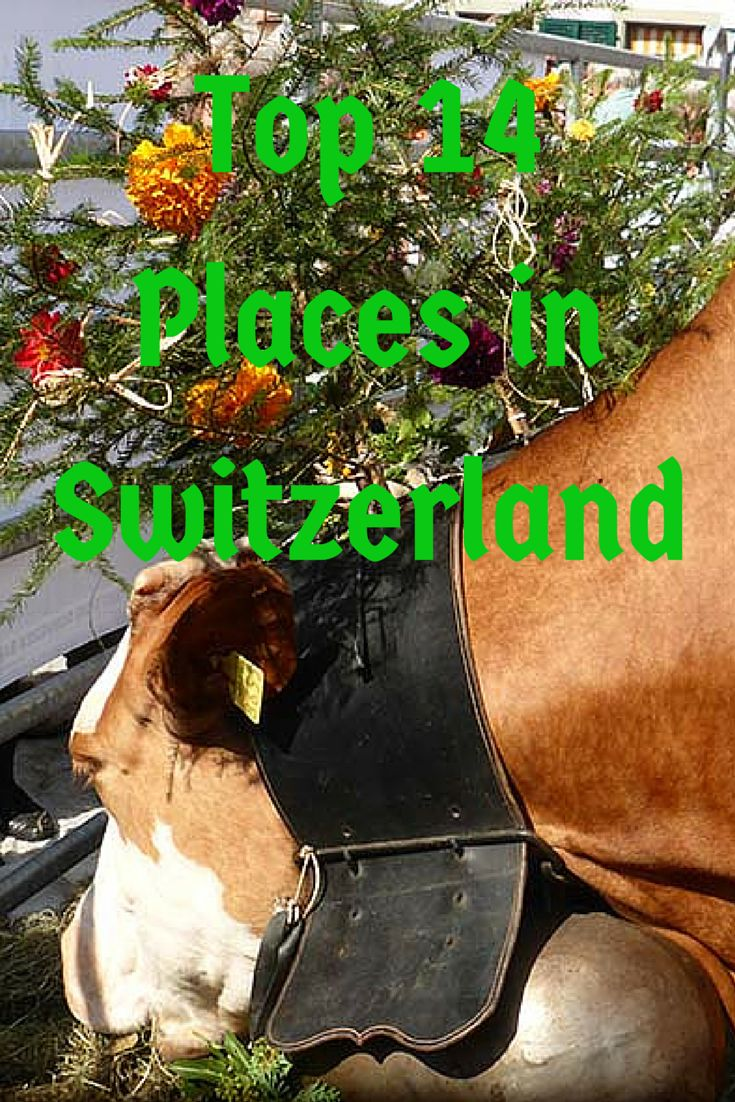 Top 14 Places in Switzerland #switzerland #travel #ngtradar