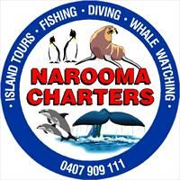 Whale watching Narooma Charters - tour information and bookings, South Coast NSW - Eurobodalla