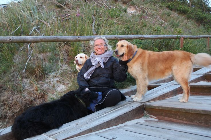 psy w Białogórze