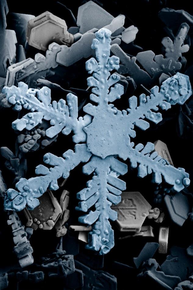 Snow_crystals_2b96