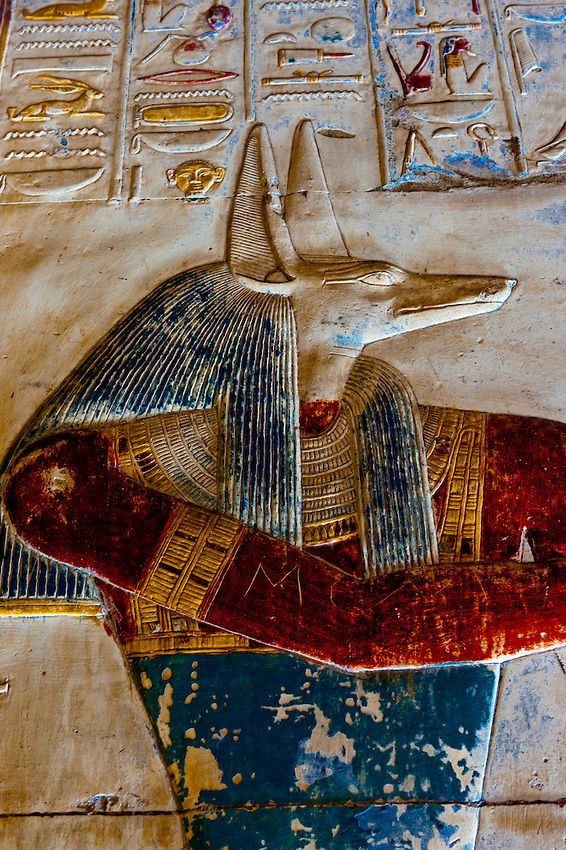 Detail of wall carvings with original pigments. Image of the Jackal-headed god Anubis. Temple of Seti I - Abydos, Egypt
