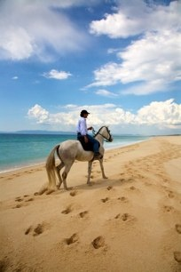 CavalosNaAreia, horse riding on Comporta's pristine coastline just one hour south of Lisbon. Treks within the Sado estuary Nature Reserve range between one and three hours, or a full day. Comporta, Alentejo, Portugal