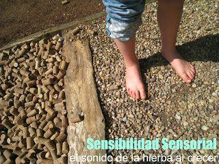 Qué es la sensibilidad sensorial: hiper e hipo :El sonido de la hierba al crecer