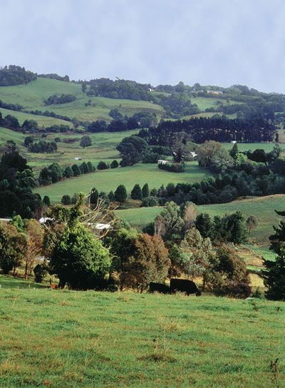 Robertson, Southern Highlands, New South Wales