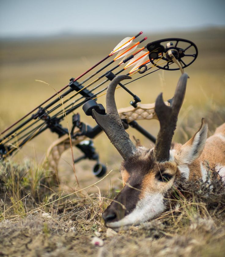 """Mark Seacat put his Chill-R to work in Montana. How are you making use of your weekend?  Photo 