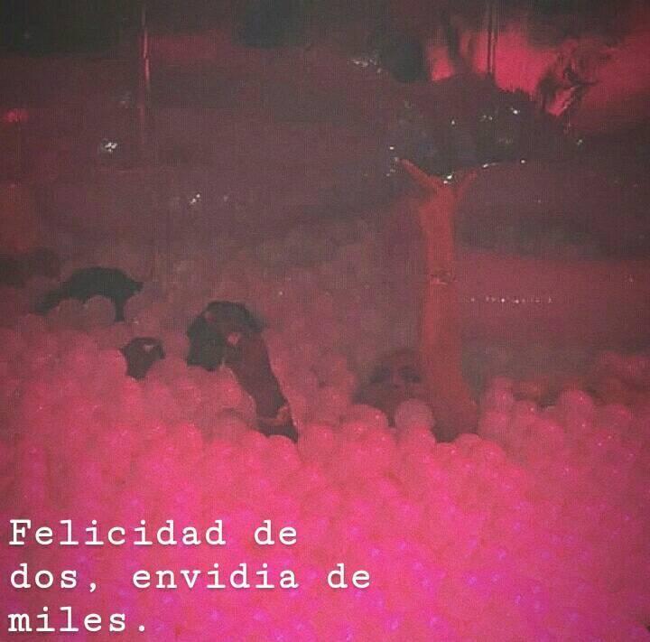Bandido Bandida Frases De Desamor Frases De Amor Y
