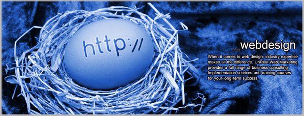Long Island Web Designers : by UnReal Web Design LI