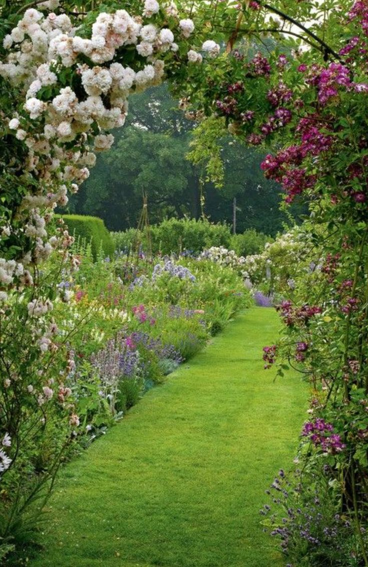 3008 best Planning my garden images – Planning My Garden