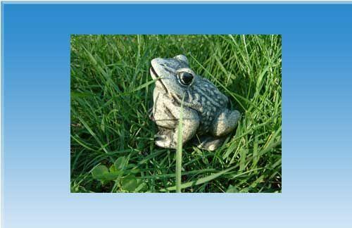 Latex Frosch Gießform