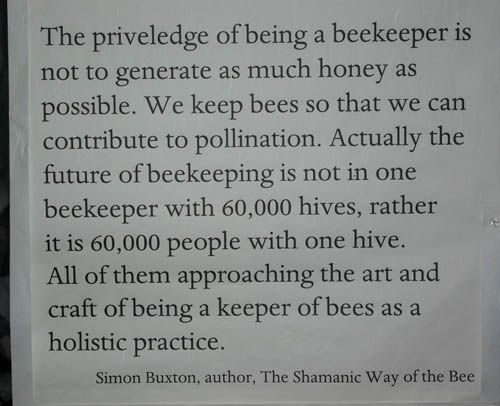 The Shamanic Way of the Bee.: