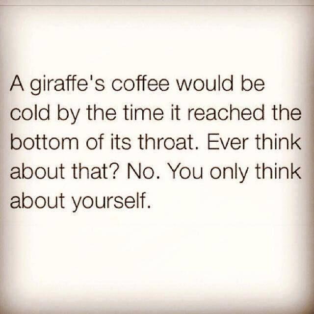 funny giraffe jokes - photo #30