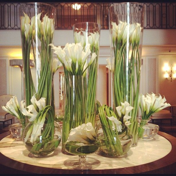 25 Best Ideas About Calla Lillies Centerpieces On