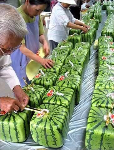 Watermelon in Japan !!!