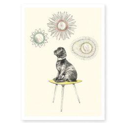 Résultats Google Recherche d'images correspondant à http://www.lafolleadresse.com/7746-home_default/affiche-297-x-21-cm-chien-sur-une-table-vintage-et-miroir-soleil-en-rotin.jpg