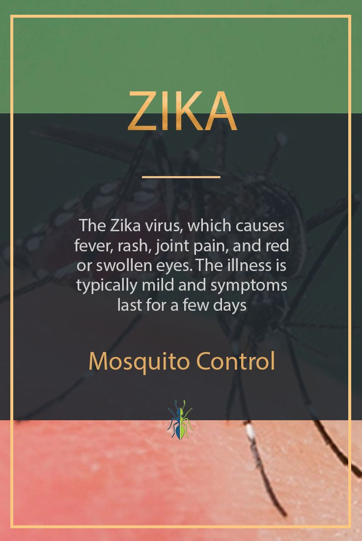 The Zika virus, which causes fever, rash, joint pain, and red or swollen eyes. The illness is typically mild and symptoms last for a few days  #zika #arizona #mosquitocontrol