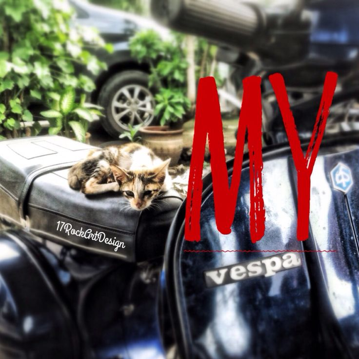 My Vespa photography by 17 Rockart design  #photography #iphonesia #iphoneography #SimplyHDR #Snapseed #typography #typorama #typepic #indonesia #17Rockartdesign #cat #dimashardiansa