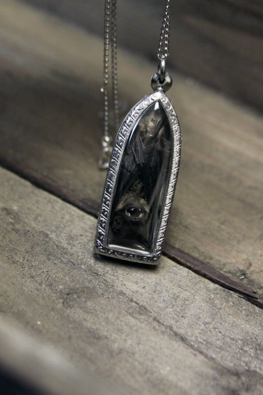 a real dried bat inside a reliquary (obtained in a cruelty free manner, of course).