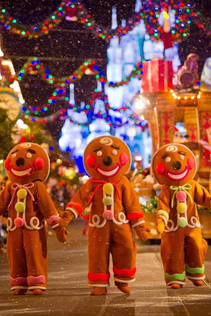 Image result for disney world christmas pinterest