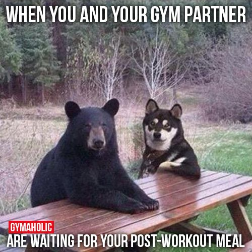 Funny Workout Partner Quotes