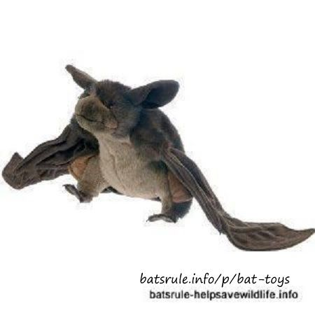 Bat Toys   Microbat plush soft toy