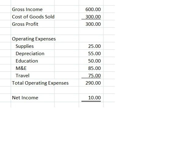 Using Gross Income and Expenses to Calculate Your Net Income