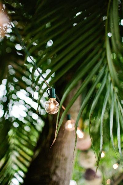 ☪tropical retreat: | summer's paradise cove |