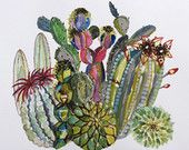 Cactus archival print illustration watercolour painting 2