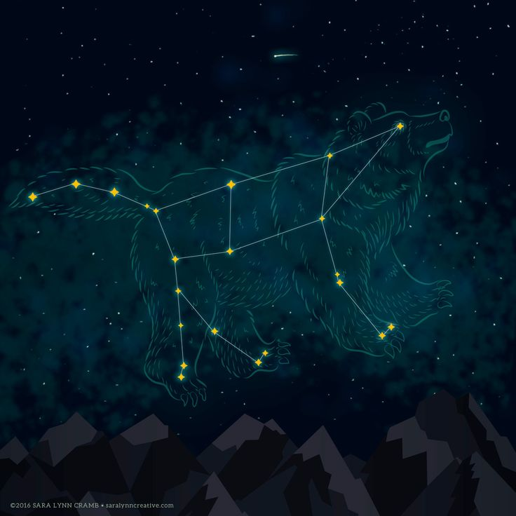 Ursa Major constellation illustration mixing vector and digital painting techniques. Art by Sara Lynn Cramb