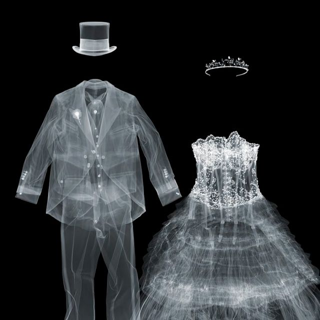 X-Ray Photography by Nick Veasey | bride & groom. this would actually be really cool