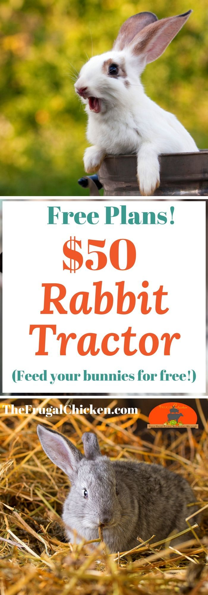 A rabbit tractor means you can feed at least part of your rabbit's diet for free. Here's how we built one for just $50!