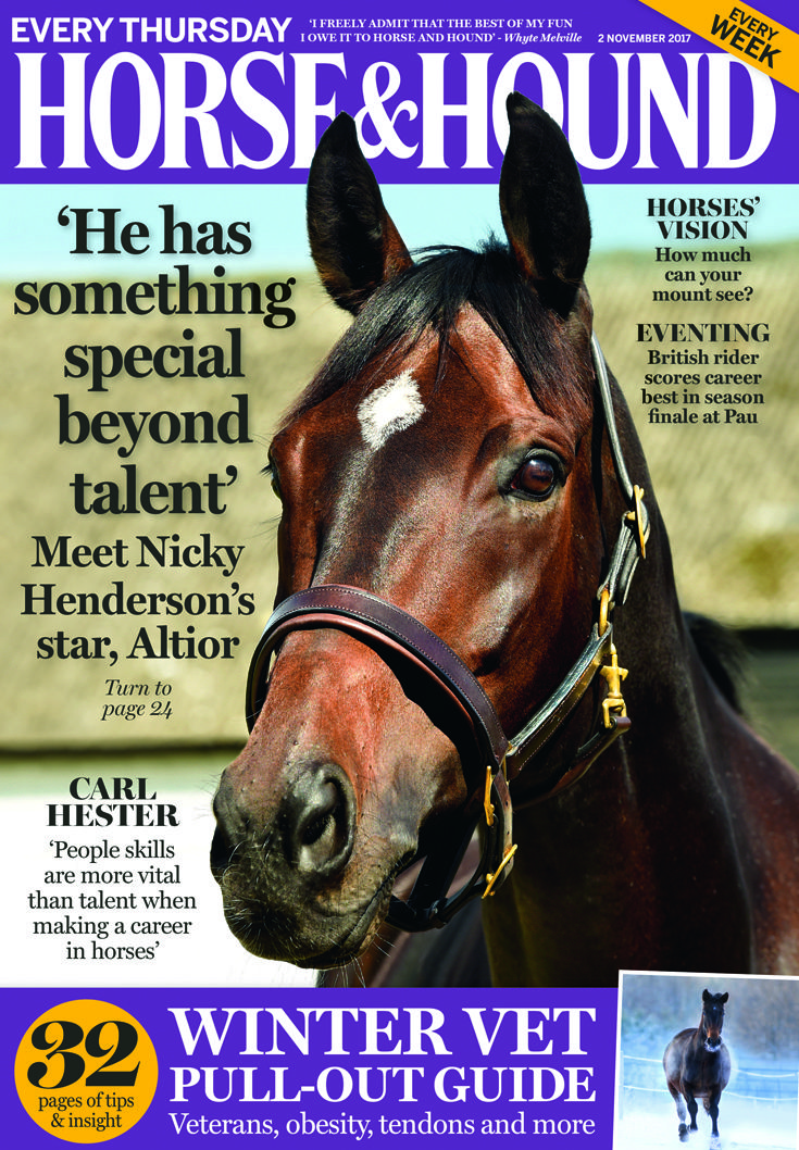 Don't miss this week's issue of Horse & Hound (2 November), including the National Hunt special and our Winter Vet pull-out
