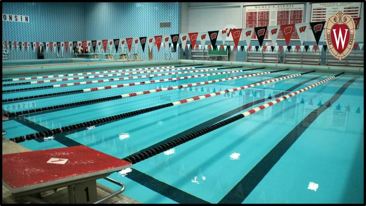 best 25 lap swimming ideas on pinterest lap pools backyard lap pools and indoor pools near me