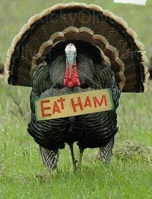 Happy Thanksgiving...!