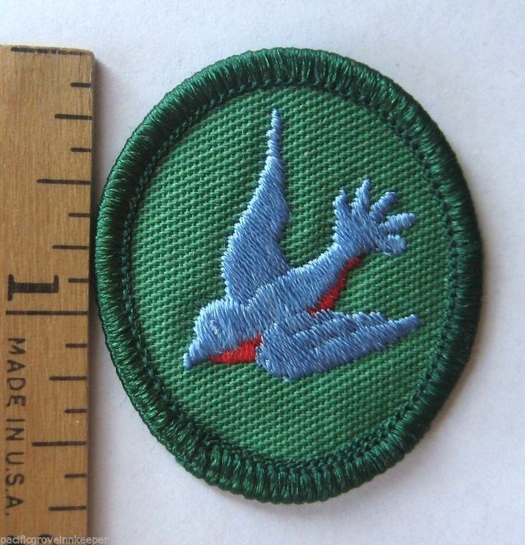 20 best images about GS TROOP CRESTS (NEW & OLD) on Pinterest ...