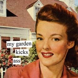 garden humor!Gardens Kicks, Napkins, Kicks Ass, Vintage Funny, Gardens Divas, Funny Quotes, Outdoor Gardens, Gardens Humor, Fabulous Products