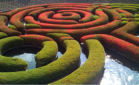 The floating maze of Azaleas at the center of the Central Gardendesigned by Robert Irwin at the Getty Center in Los Angeles, California. Normally I'm against formal clipping of Azaleas but here it works…for me. What do you think?