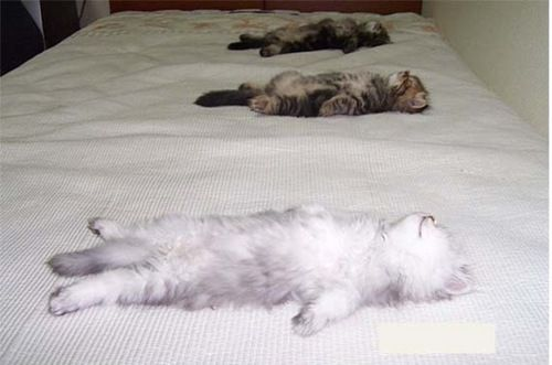 Scéance de relaxation <3