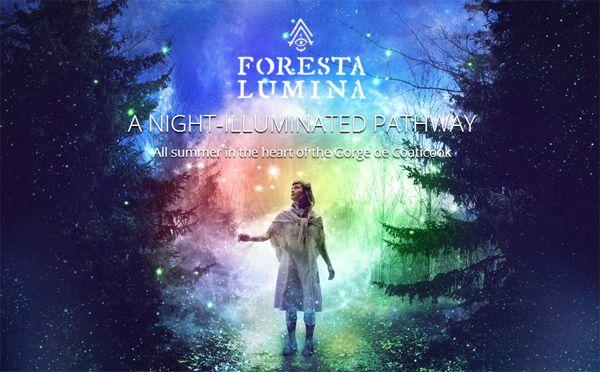 foresta-lumina