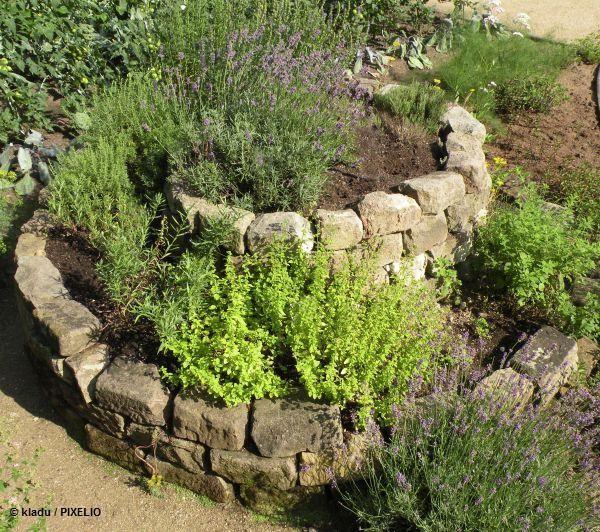 Kreislauf-Gärten - Ökologische/Permakulturelle Elemente