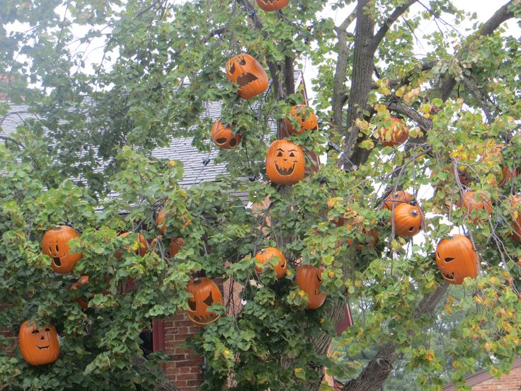 13 best Greenfield Village images on Pinterest   Dearborn michigan ...