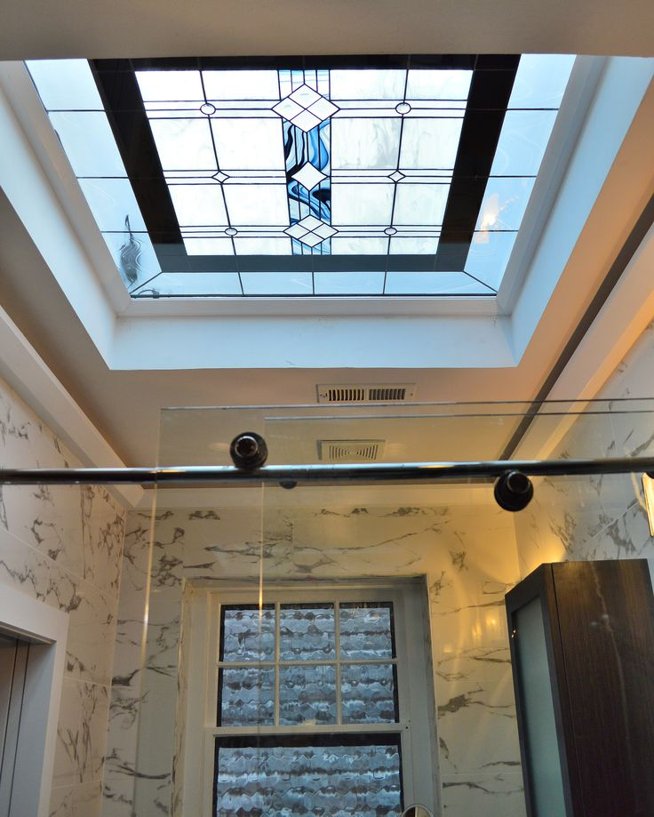 Craftsman Skylight and window Bearman