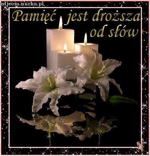 http://www.allegaleria.pl/images/k11g1h6mmx1xplcrjf.gif