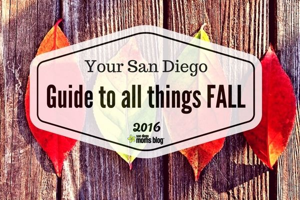 It's here! It's here! Your one stop shop for all things Fall in San Diego is here. We have races, beer fests, pumpkin patches, vendor fairs, trick-or-treating and more. Grab a pumpkin spiced latte and check out some of the awesome events happening this Fall in San Diego.
