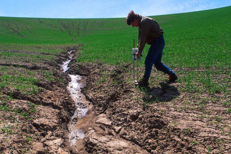 """""""Pour la FNSEA, le cours d'eau est une entrave au développement agricole""""...   https://reporterre.net/La-nouvelle-cartographie-des-cours-d-eau-menace-l-interet-general"""