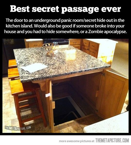Don't care about a bout a panic room, or the zombie apocalypse... But this would be a fantastic way to deal with my basement entrance and remodel my house!!