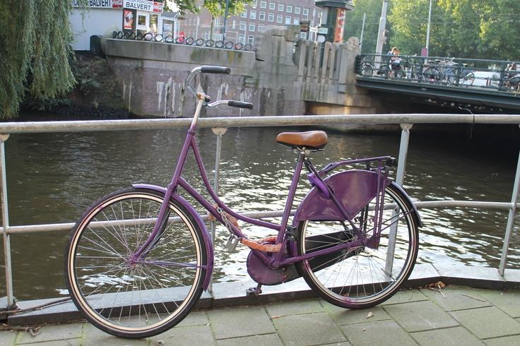 Purple bike in amsterdam