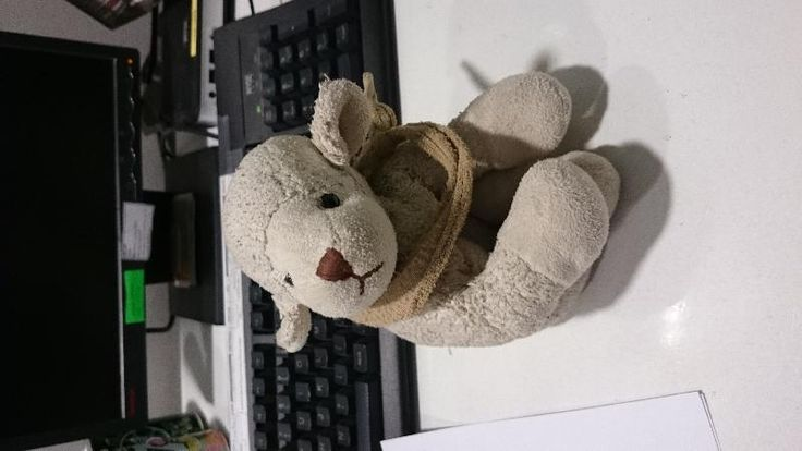 Found on 11/12/2014 @ train station marne la vallee disneyland France . Old sheep Visit: https://whiteboomerang.com/lostteddy/msg/6q6c1j (Posted by Stephanie on 12/12/2014)
