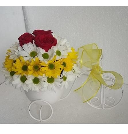 Bisiklette Çiçek Daha Güzel 55,08 TL+Kdv Sarı Beyaz Papatya Çiçek/ Ürün kod NzA 260/ Ürünü Satın Almak İsiyorsanız Resimin üstüne Tıklayın