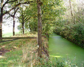 Fietsroute Houten en omgeving